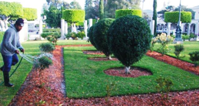 Gobierno municipal de zapotl n el grande for Limpieza de jardines madrid